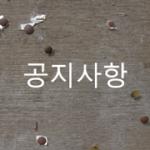 notice-board-banner